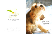 otterhound - you are special